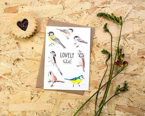 Lovely Tits // Valentines Day Card