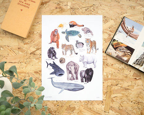 Endangered Animals Print // A4 or A3
