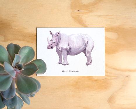 Rhino Postcard // Mini Print