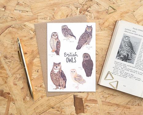 British Owls // Blank Card
