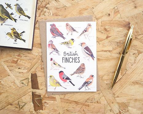 British Finches // Blank Card
