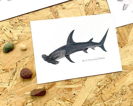 Great Hammerhead Shark Postcard // Mini Print