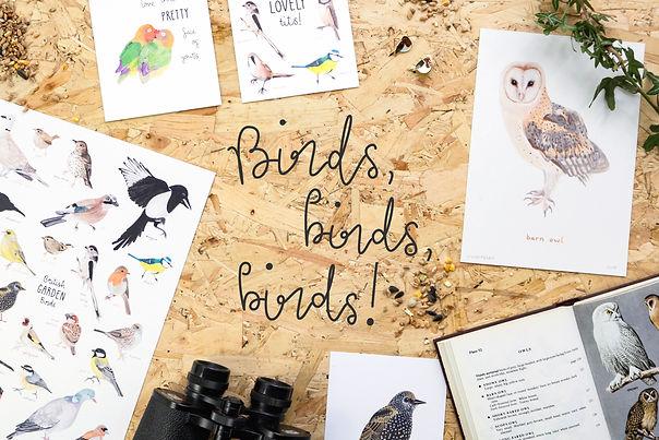 Birds Birds Birds (3x2).jpg