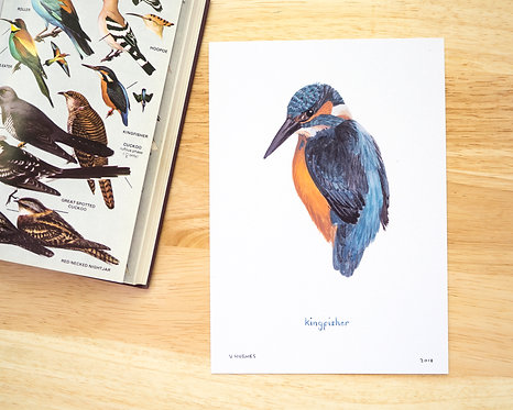 Kingfisher Print // A5