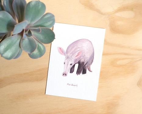 Aardvark Postcard // Mini Print