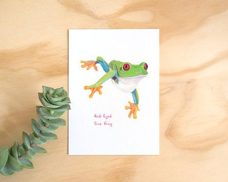Red-Eyed Tree Frog Postcard // Mini Print