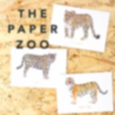 1x1 - THE PAPER ZOO.jpg