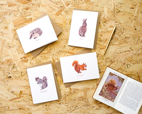 British Wildlife // Luxury Blank Card Pack