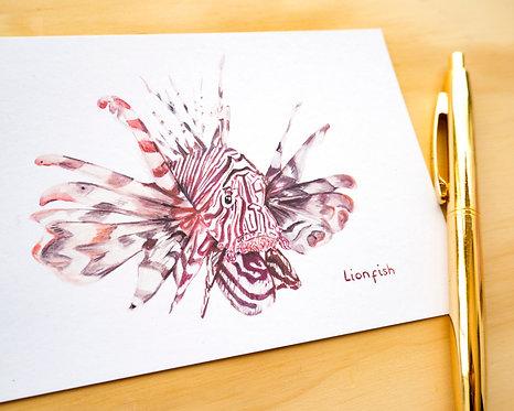 Lionfish Postcard // Mini Print