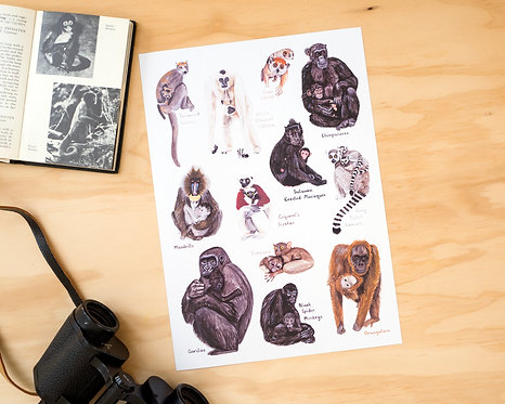Primate Mothers Print // A4 or A3