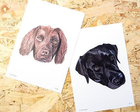 Custom Dog Face Painting A5