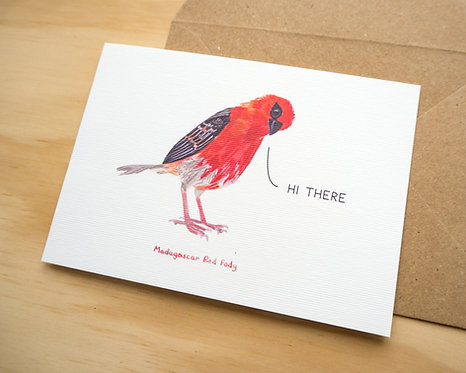 Hi There Madagascar Red Fody // Hello Card