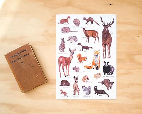 British Mammals Print A4 // A3