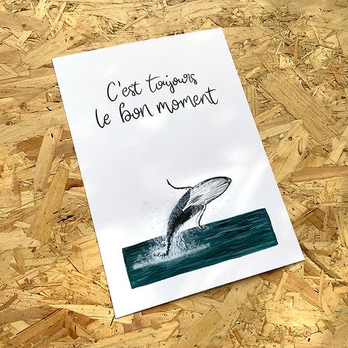 C'est Toujours Whale Print // A4 or A3