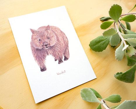 Wombat Postcard // Mini Print
