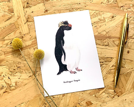Rockhopper Penguin Postcard // Mini Print