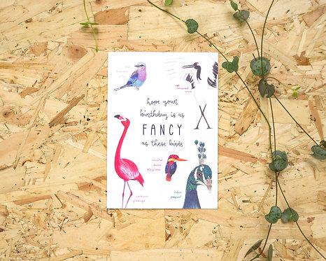 Fancy Birthday Birds // Birthday Card