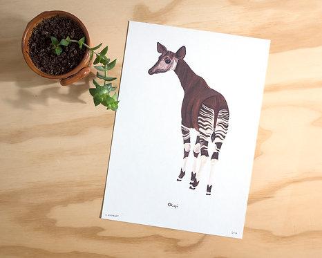 Okapi Print A4