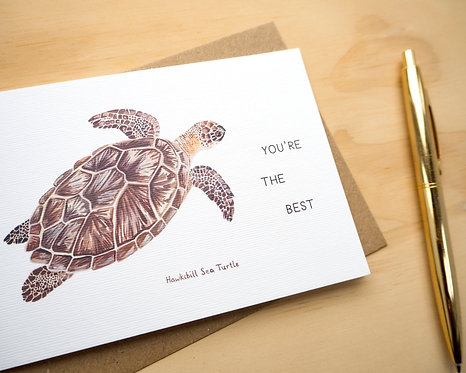 You're the Best Turtle // Friendship Card