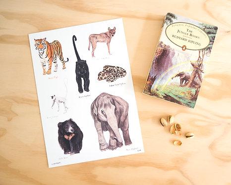 Real Life Jungle Book Print A4 // A3
