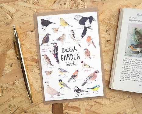 British Garden Birds // Blank Card