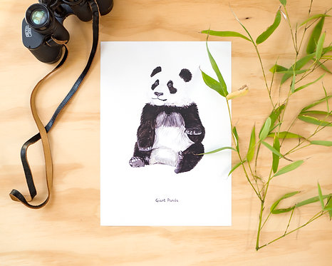 Young Giant Panda Print // A5 or A4