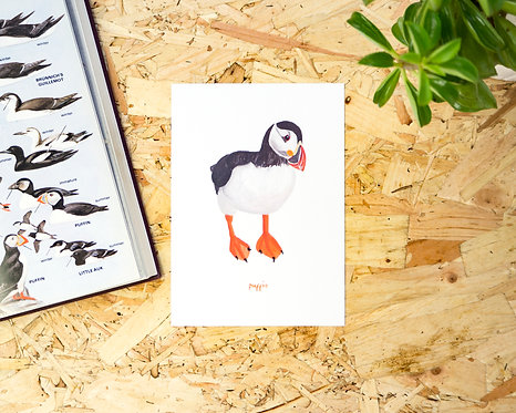 Puffin Postcard // Mini Print