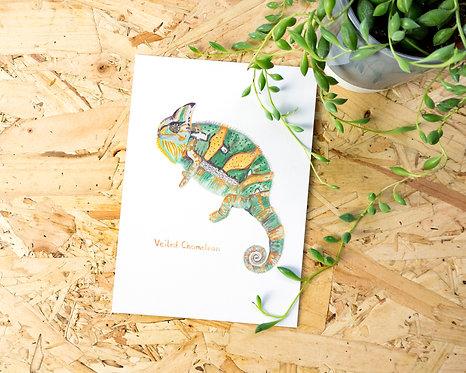 Veiled Chameleon Postcard // Mini Print