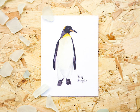 King Penguin Postcard // Mini Print