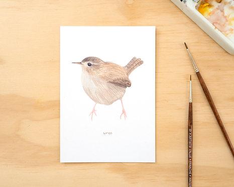 Wren Postcard // Mini Print