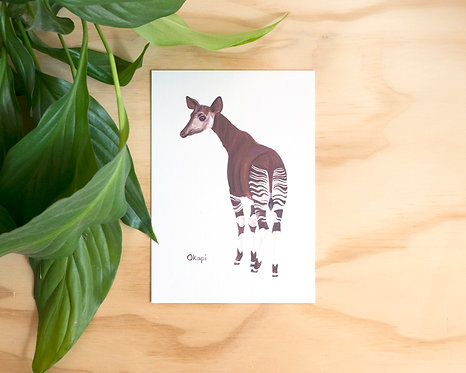 Okapi Postcard // Mini Print