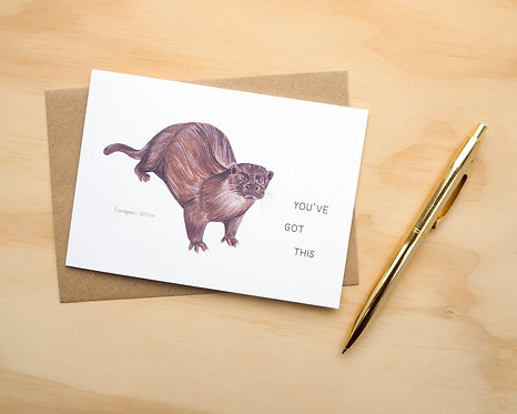 You've Got This Otter // Friendship Card