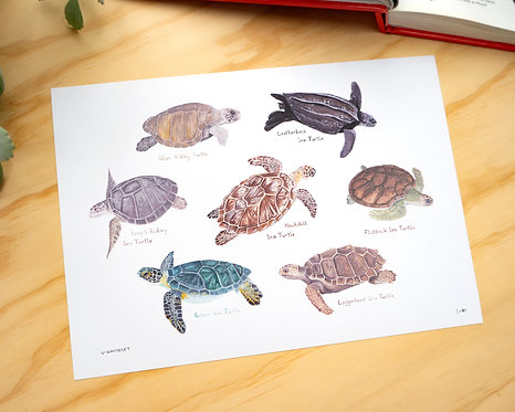 Sea Turtle Print // A4 or A3