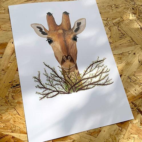 Giraffe in the Bush Print // A4 or A3
