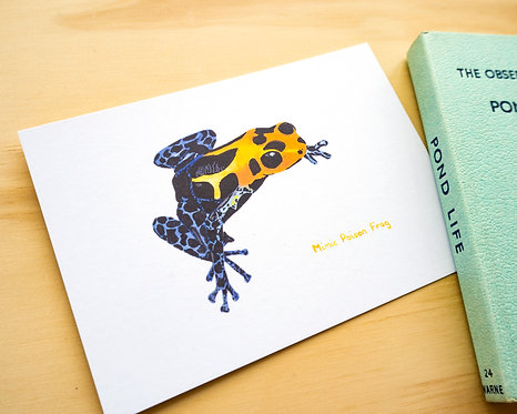 Mimic Poison Frog Postcard // Mini Print