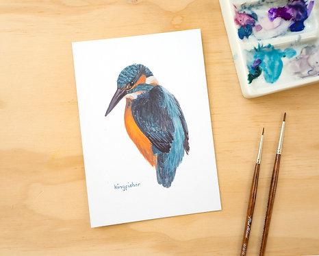 Kingfisher Postcard // Mini Print