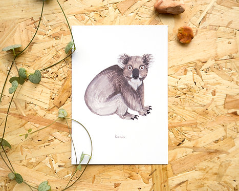 Koala Postcard // Mini Print