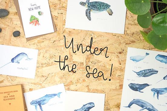 Under the Sea Banner (3x2).jpg