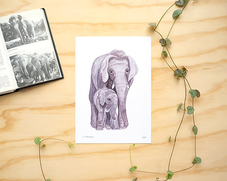 Elephant Mother and Babe Print // A5 or A4