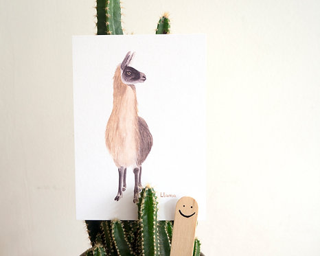 Llama Postcard // Mini Print