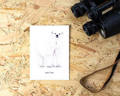 Polar Bear Postcard // Mini Print