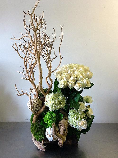 White Rose Mansanita