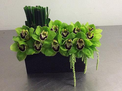 Cymbidium Orchid Box