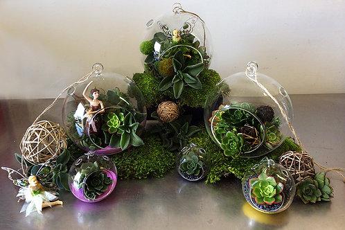 Hanging Succulent Globes