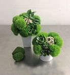 "22 Mini Green Duo $75 set (5"" x 7"", 6"" x"