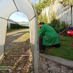 Azaya Gardens: Tenemos la esperanza de una tendencia de mejoría en el mercado.
