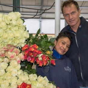 Ecuador: Elite Flower acquires Qualisa