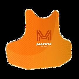 SAF_Matrix.png