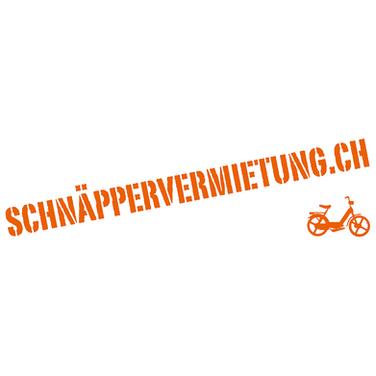schnaeppervermietung_ch.png