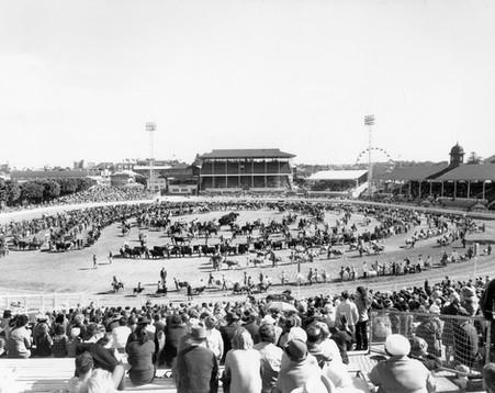 Grand Parade at the EKKA Brisbane, Augus